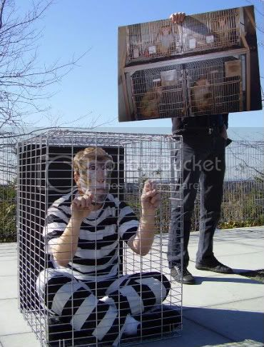 A caged Wil.